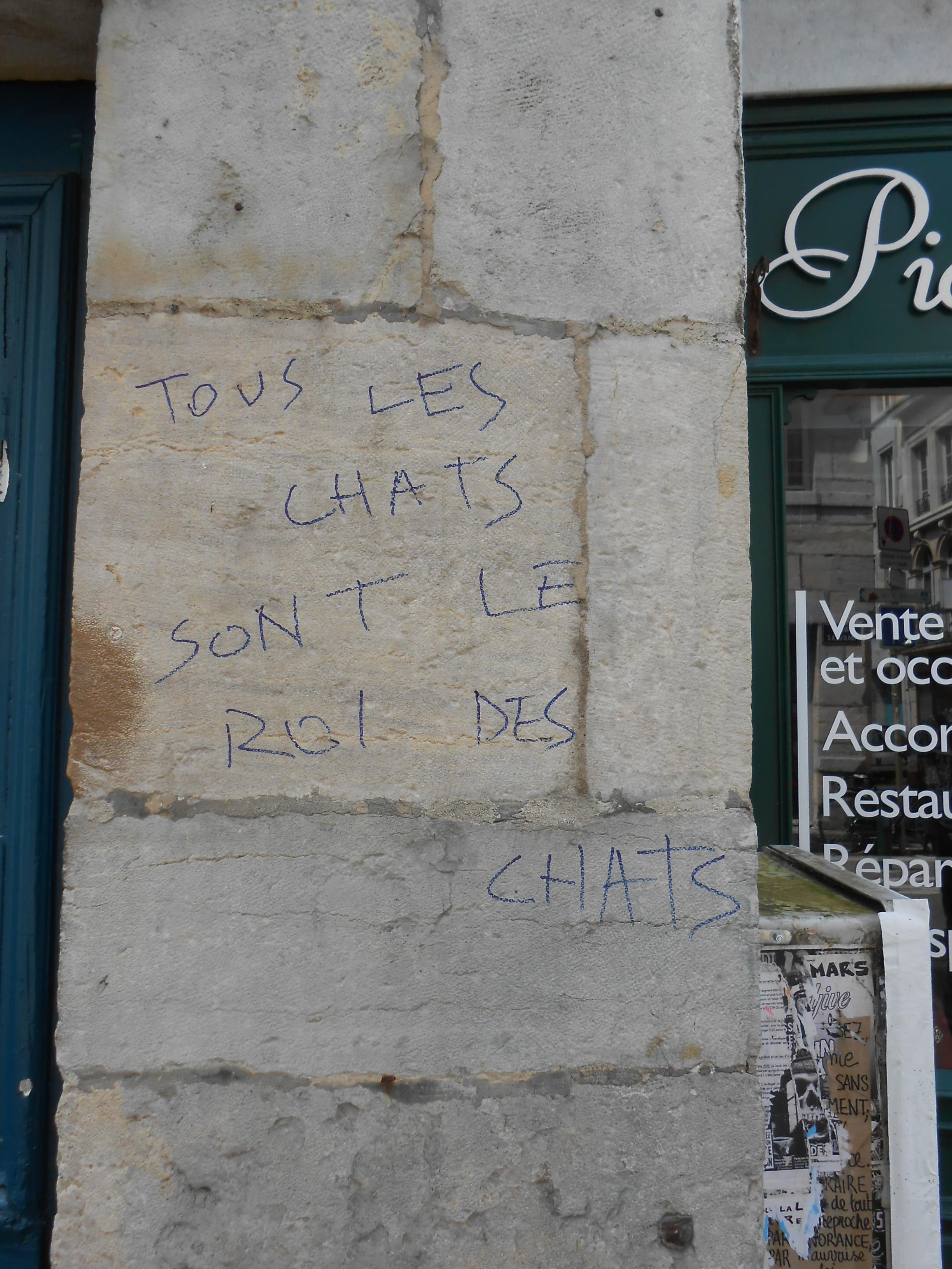 tous_les_chats_sont_le_roi_des_chats_besancon_07.2014