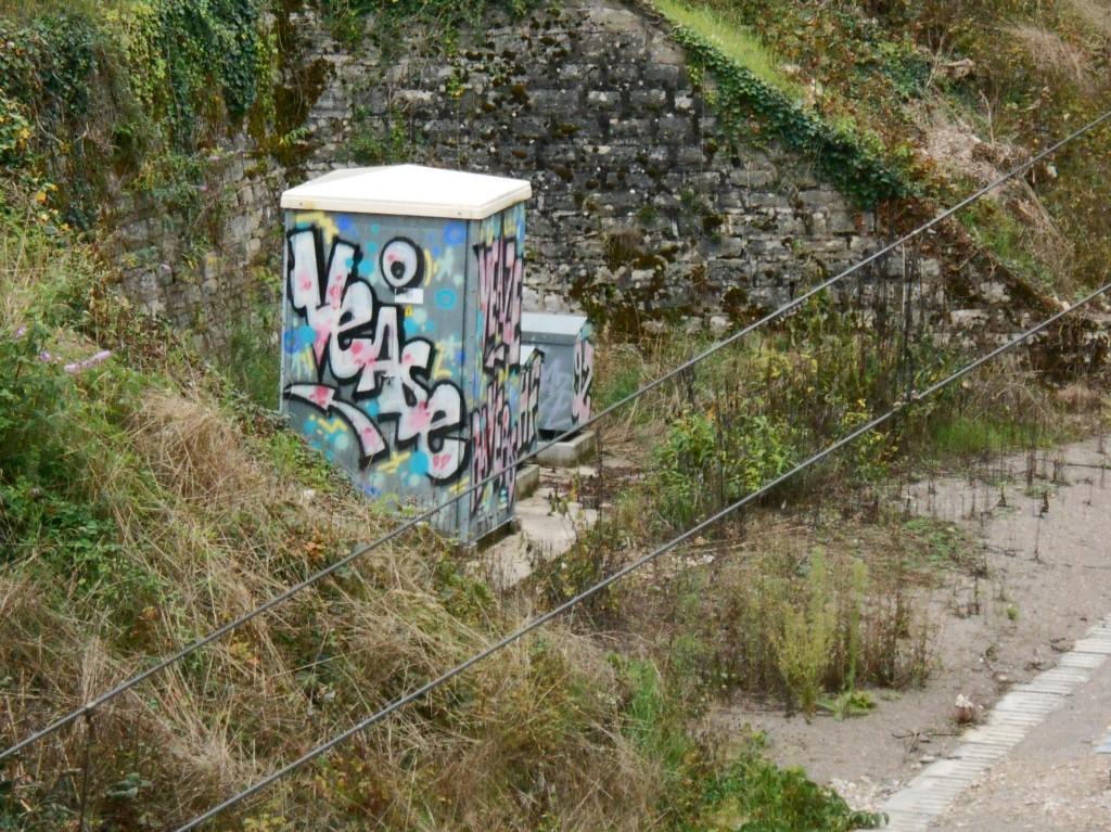 septembre 2014 veaze graffiti besancon (1)
