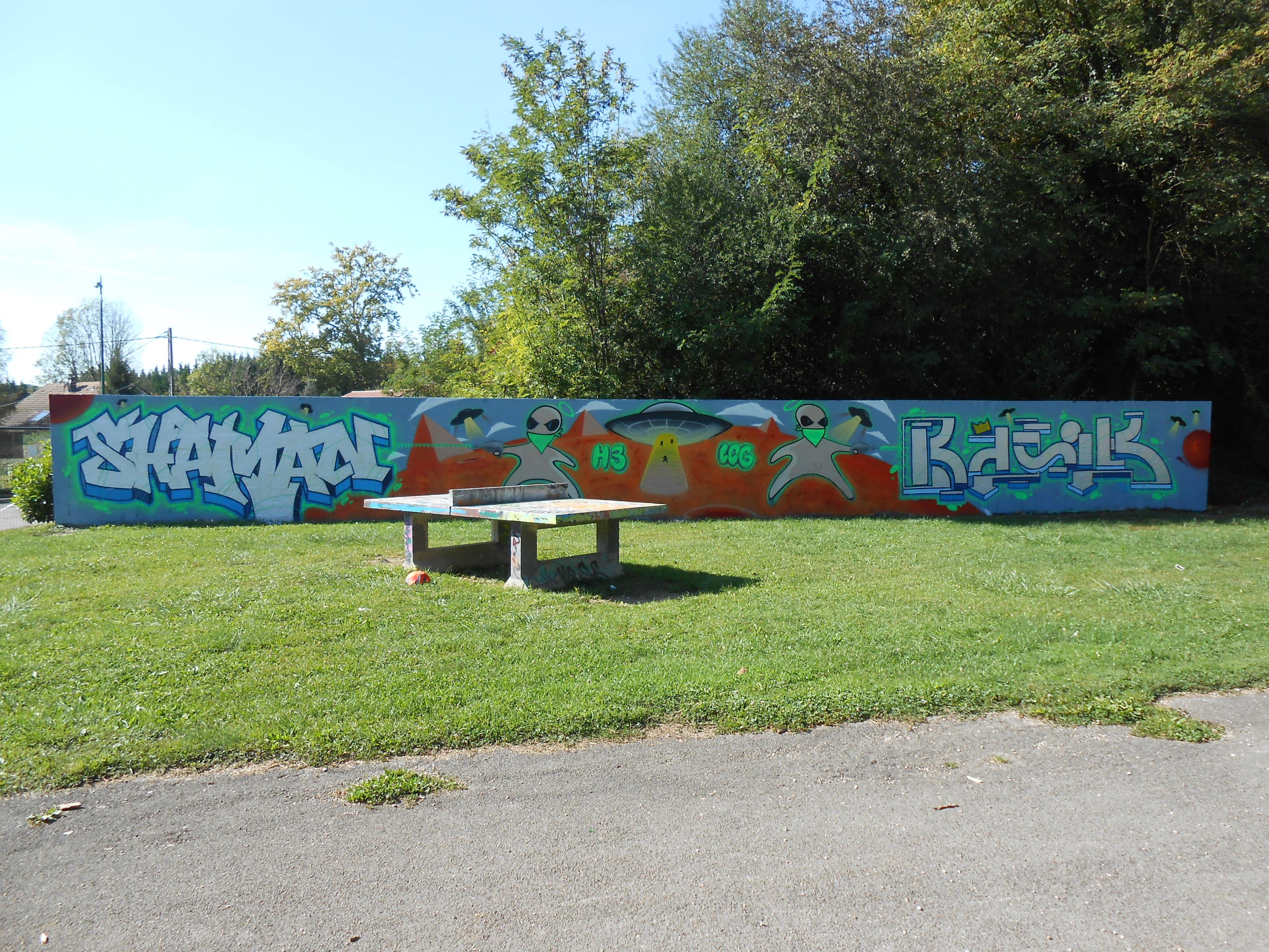 shaman.basik - graffiti - sept 2014 montferrand (1)