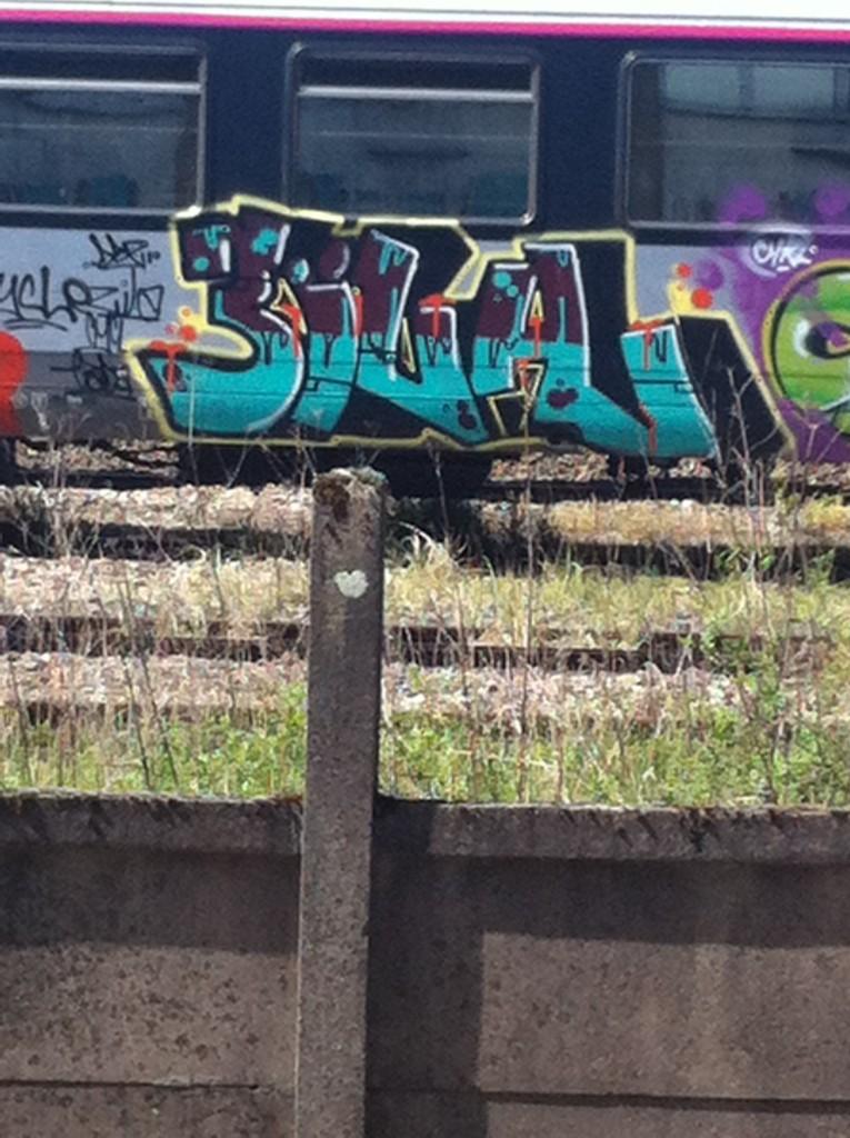 padaone, zila, cykle - graffiti train (2)