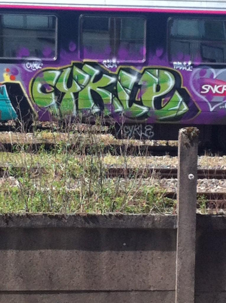 padaone, zila, cykle - graffiti train (3)