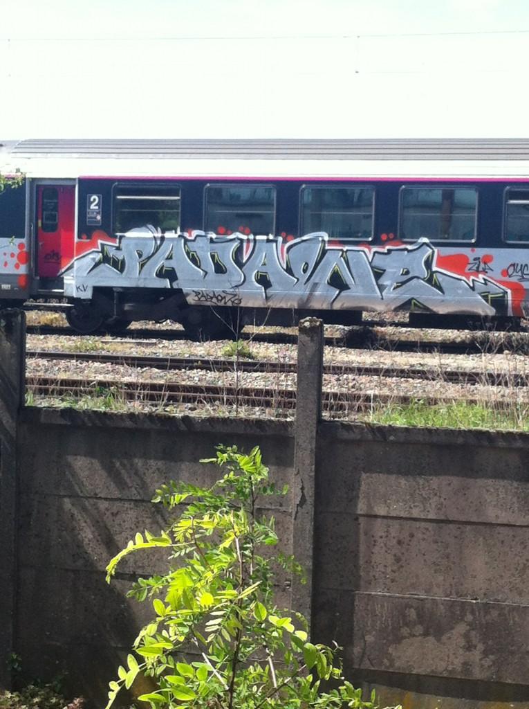 padaone, zila, cykle - graffiti train (4)